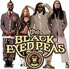 Концерт - Black Eyed Peas