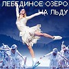 Шоу - Swan Lake on Ice